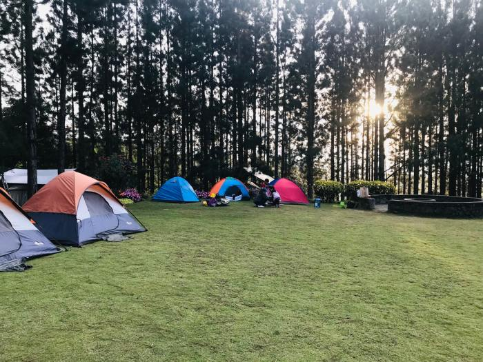 kamperen bij de buren