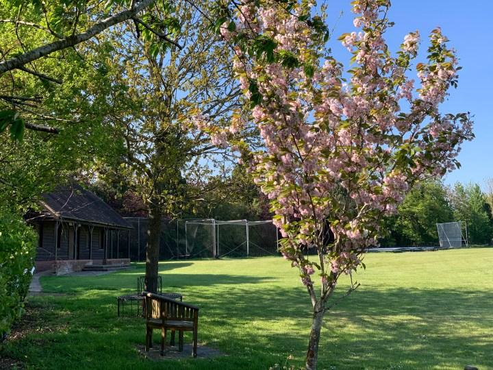 wootton parish cricket ground 1 w