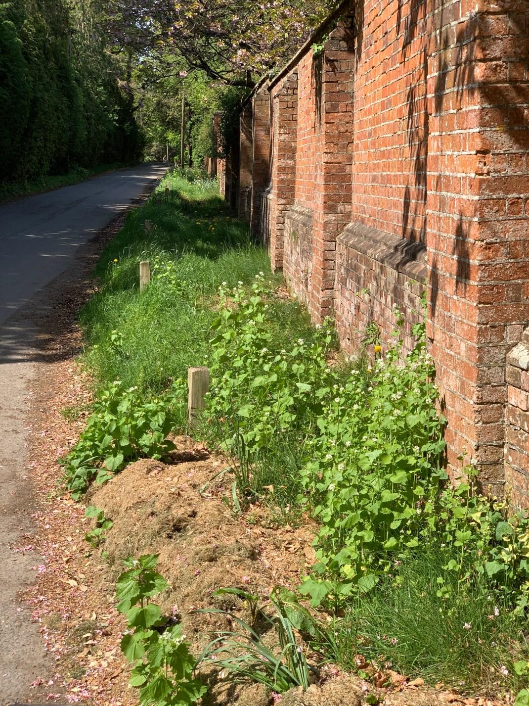 wootton parish jarn way 5