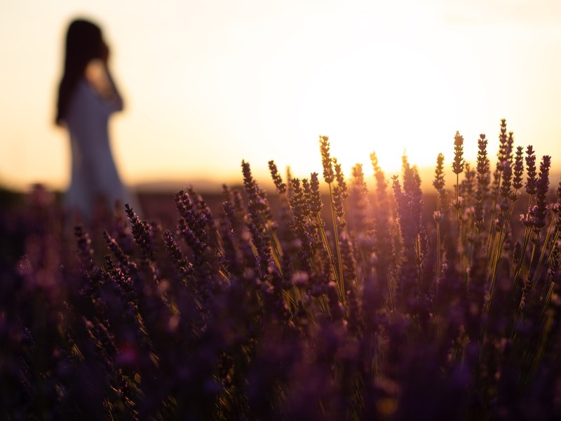 girl walking in field at sunset