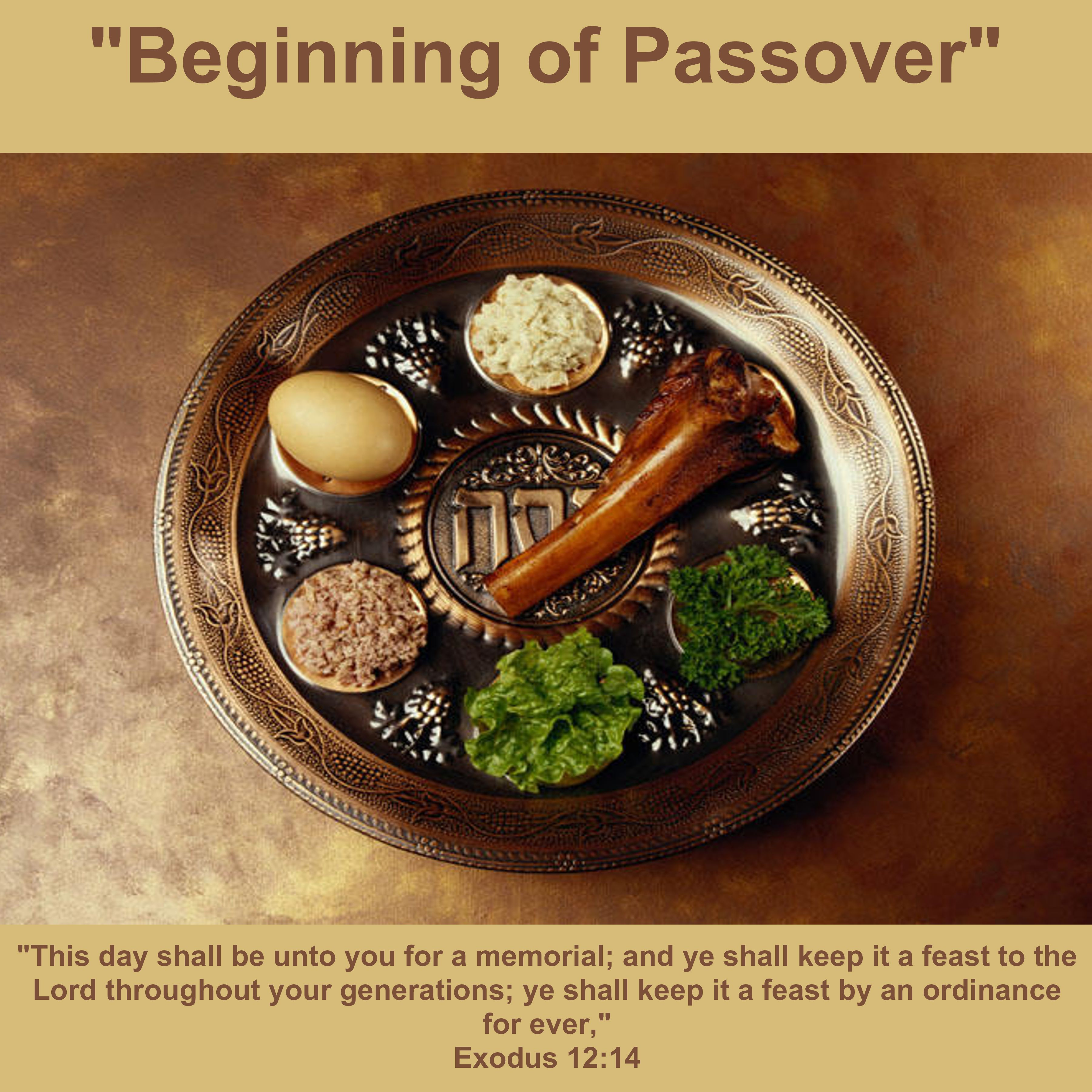 The Passover Lamb Images