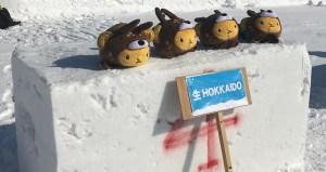 Hokkaido team