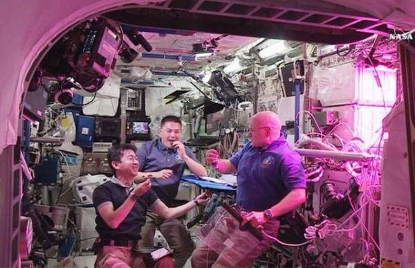 ISS Astronauts eat first space-grown vegetables | wordlessTech