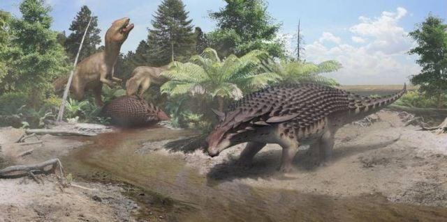Dinosaur Borealopelta markmitchelli