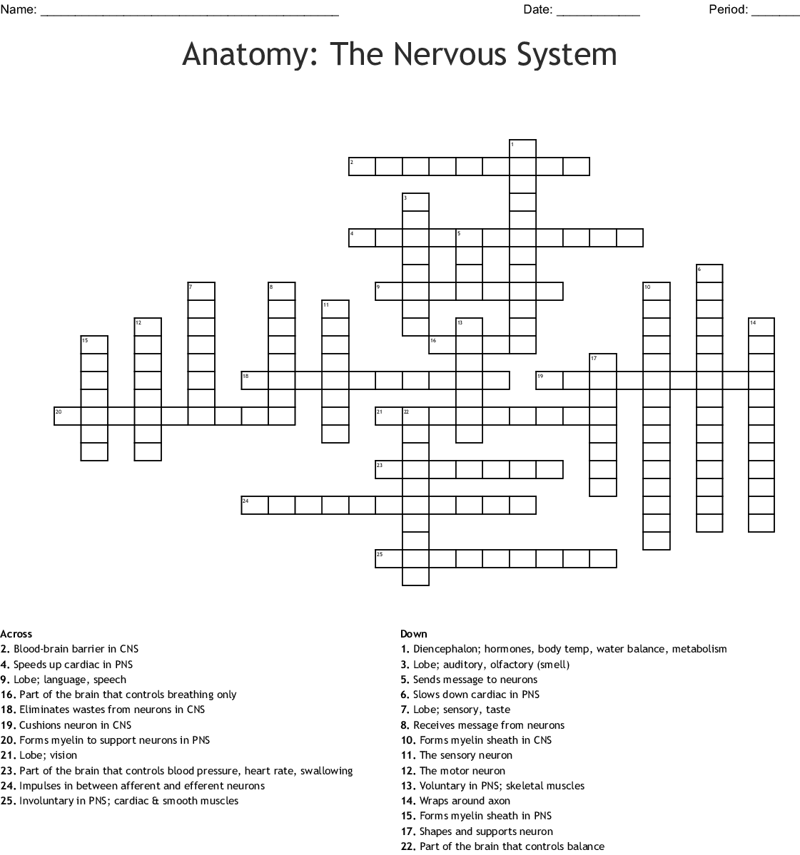 Nervous System Chapter 7 Worksheet