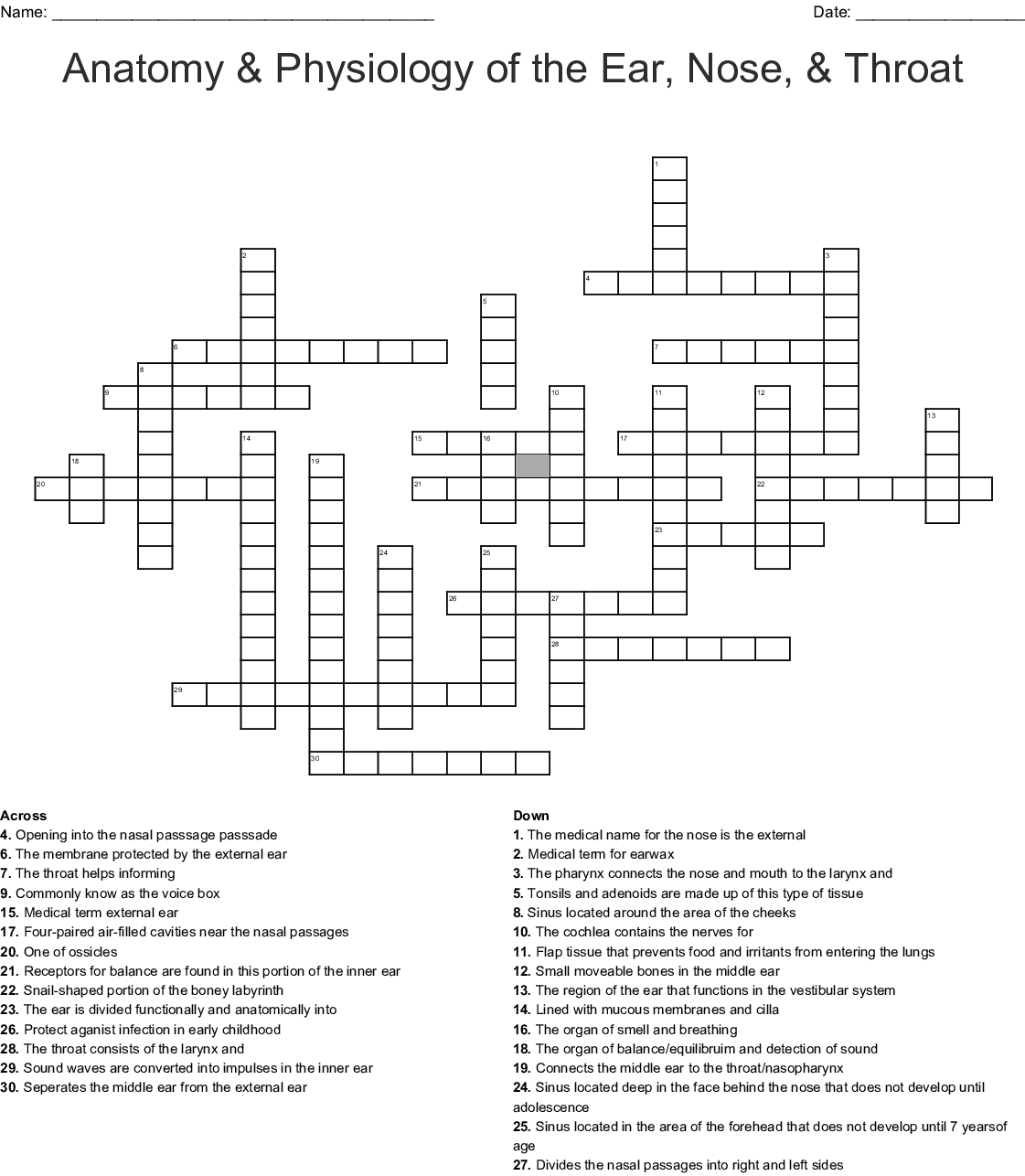 Anatomy Amp Physiology Of The Ear Nose Amp Throat Crossword
