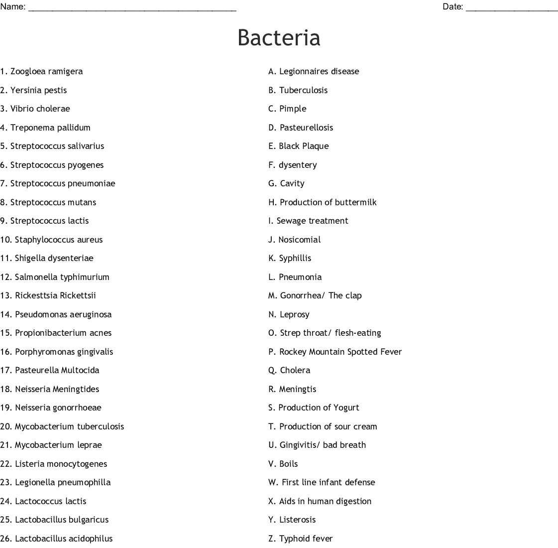 Bacteria Word Search