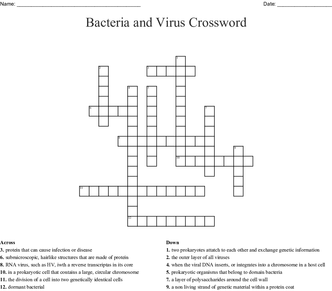 Bacteria Crossword