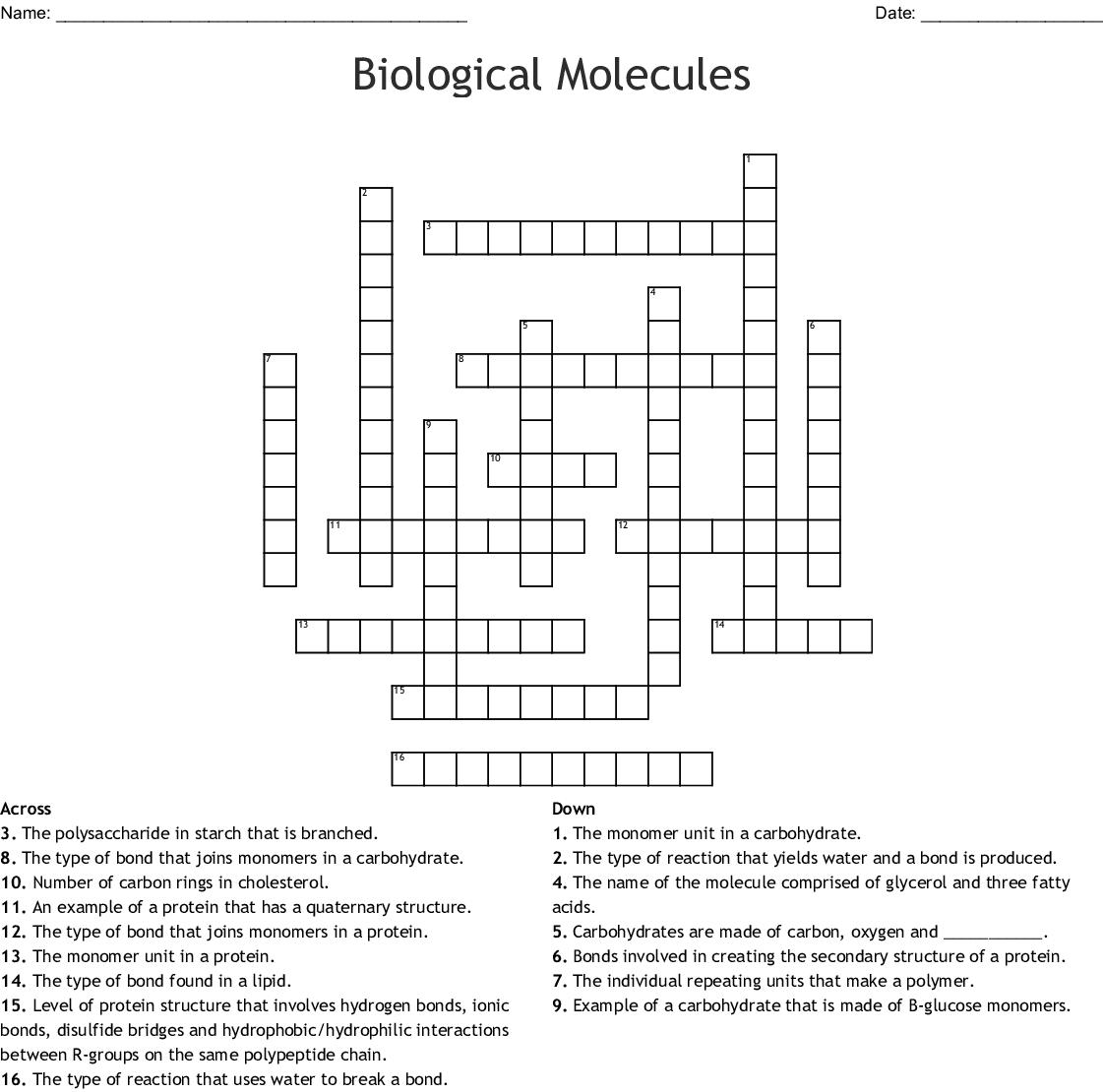 Biological Molecules Crossword