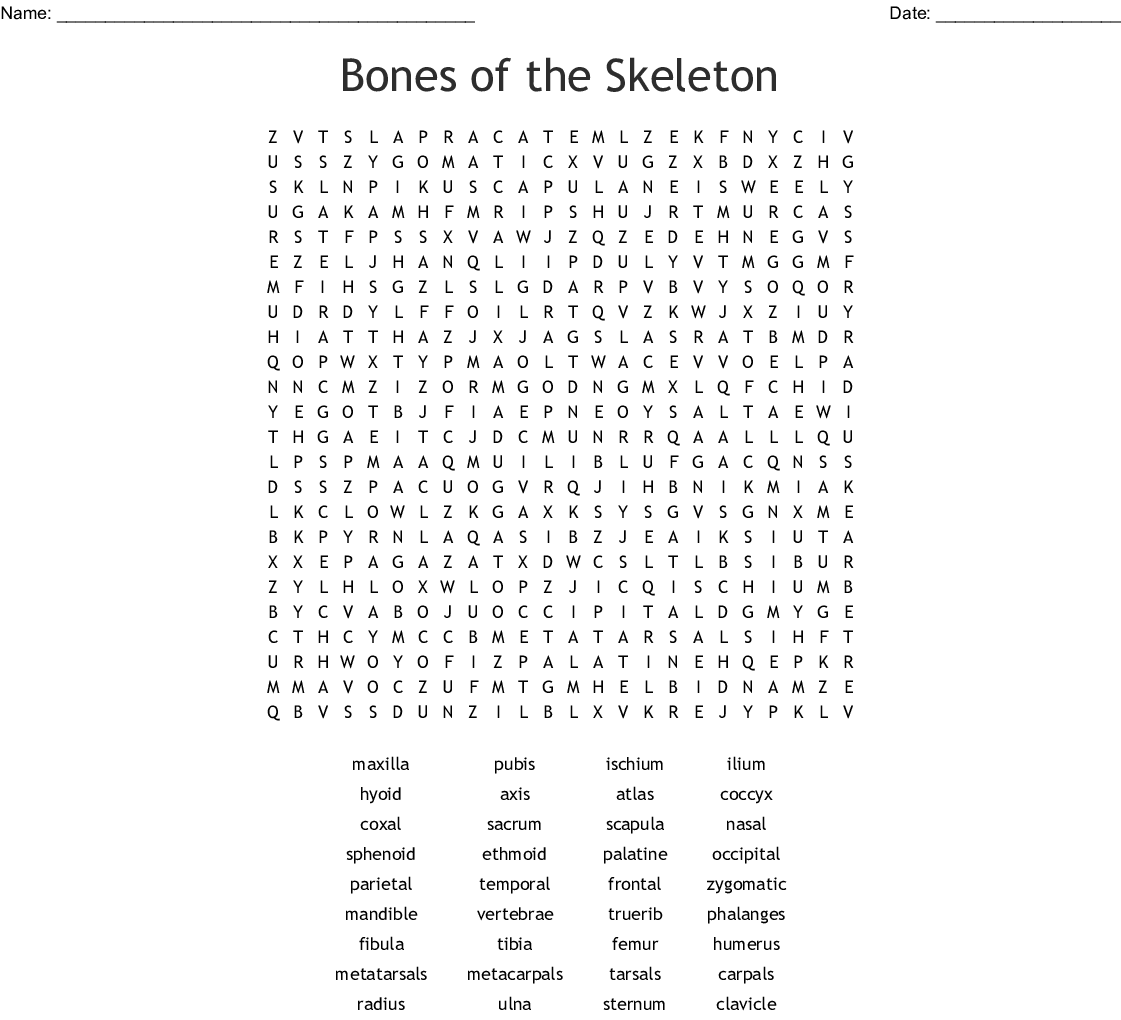 Anatomy And Physiology Word Search