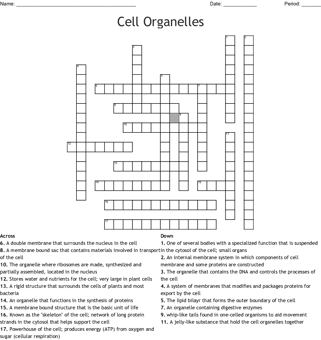 Cell Organelles Crossword