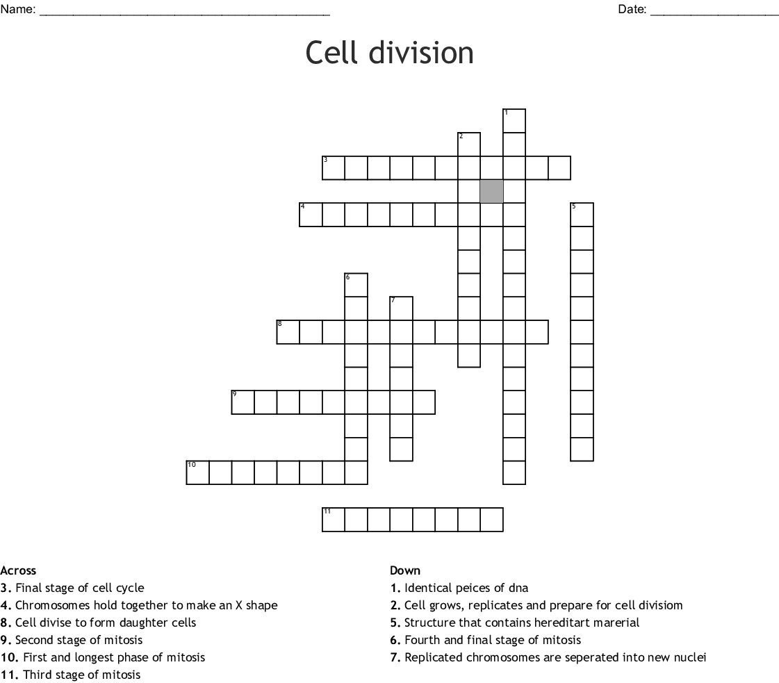 C2l1 Cell Cycle And Cell Division Crossword