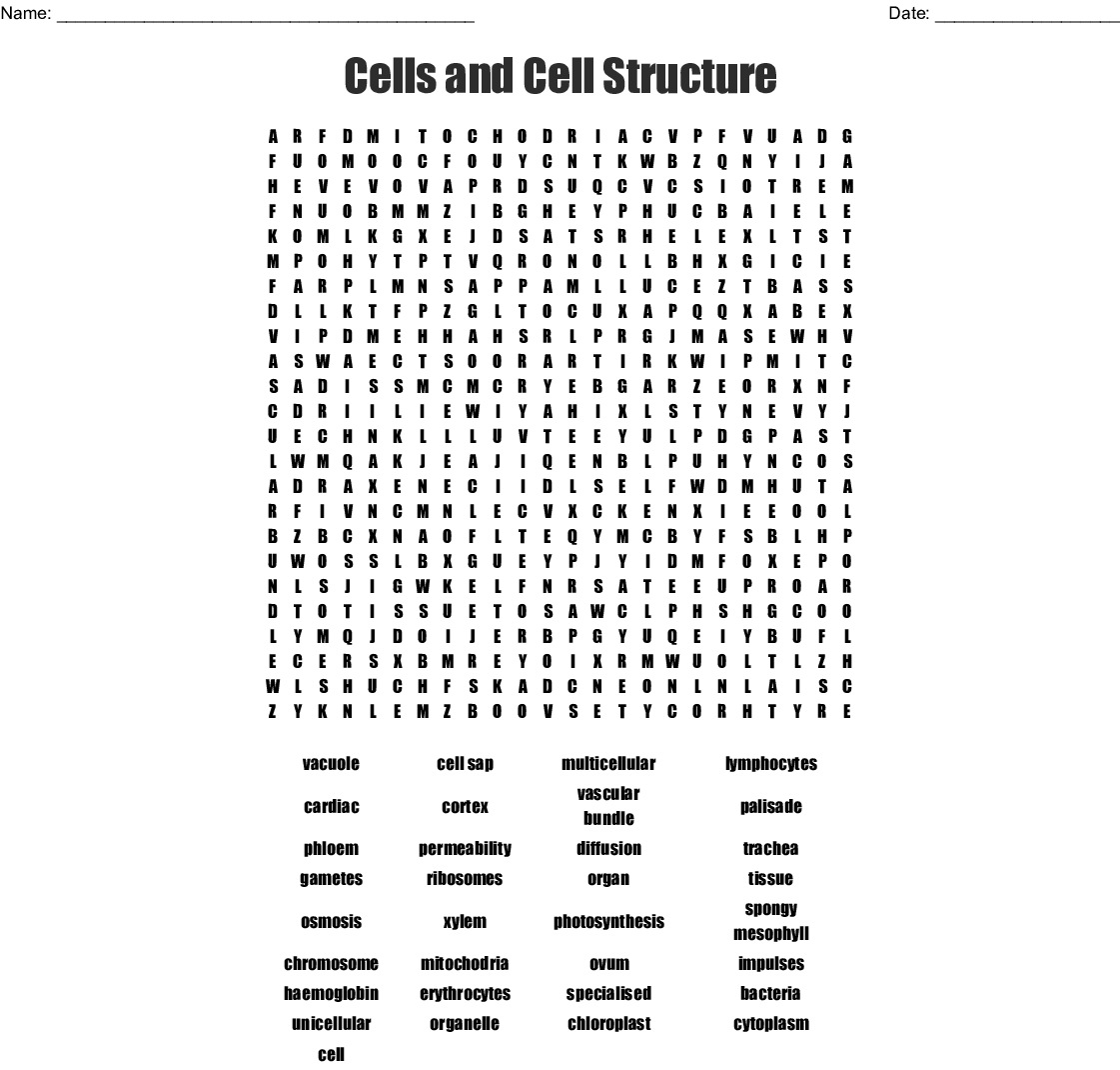 Cells And Cell Structure Word Search