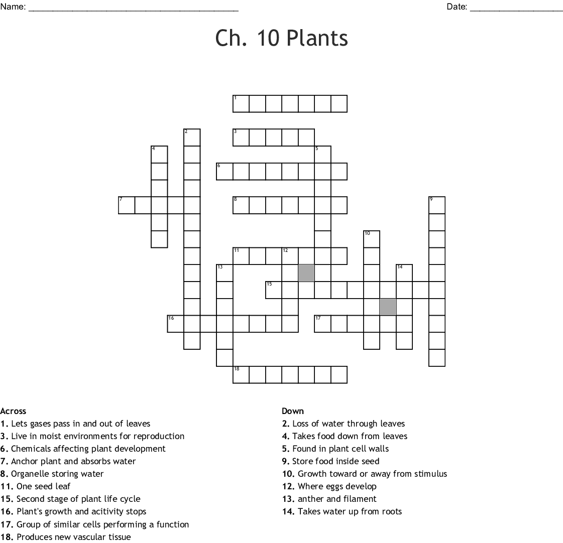 Ch 10 Plants Crossword