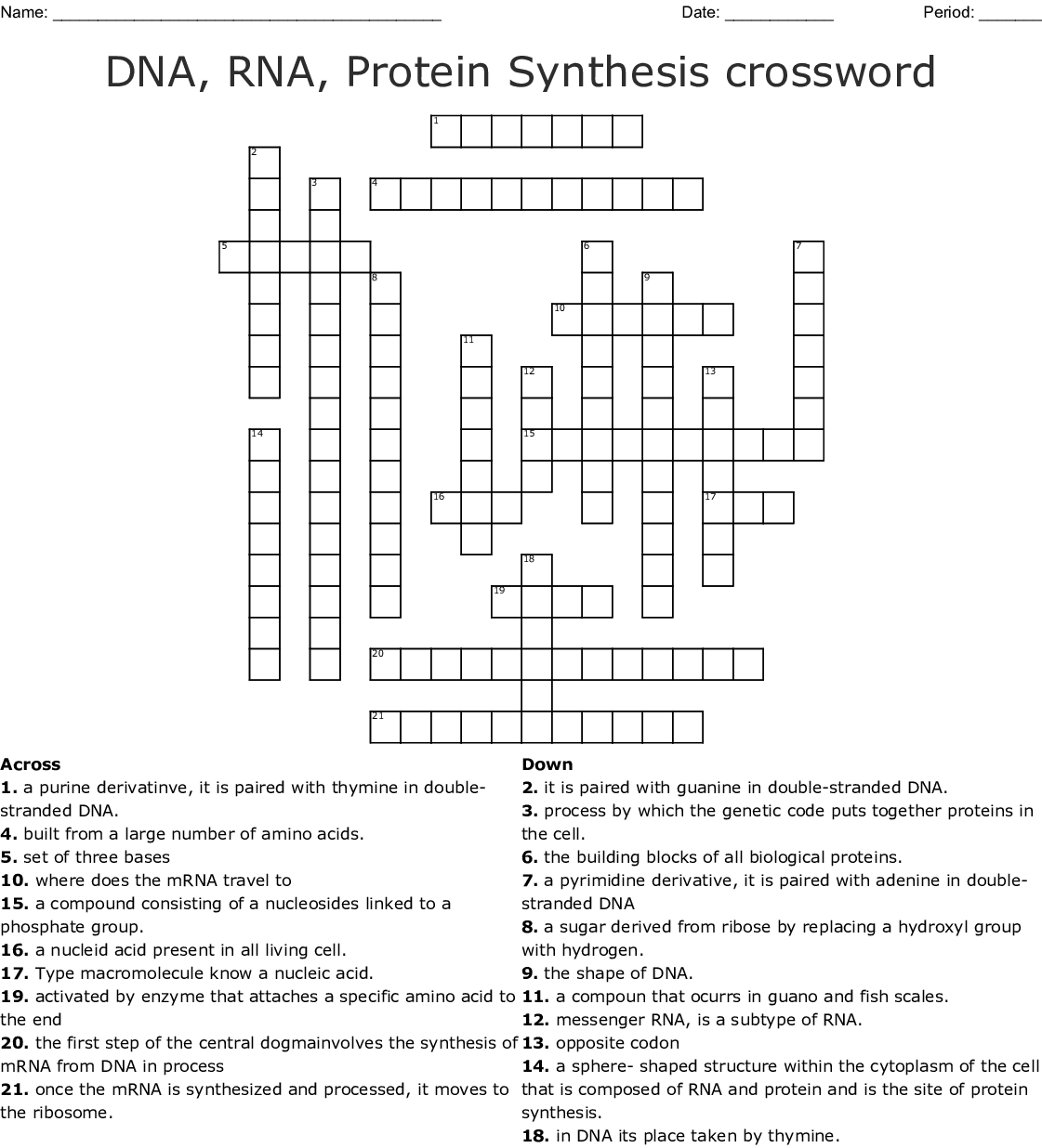 Section 12 3 Rna And Protein Synthesis Worksheet Answer