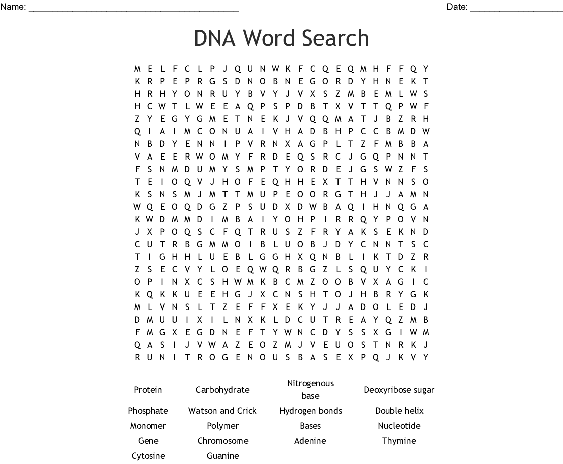 Dna And Genes Chapter 11 Worksheet Answers