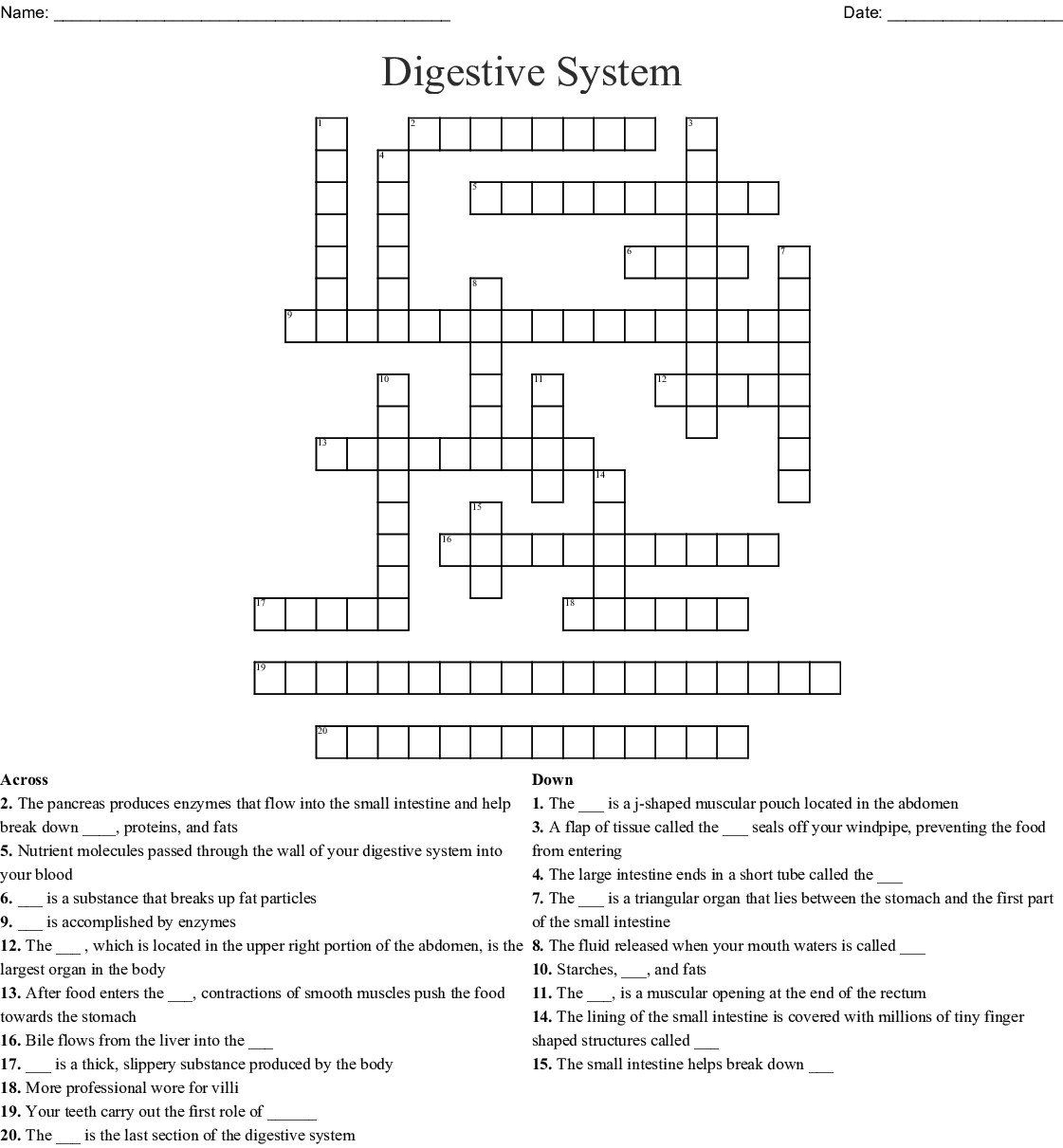 Fundamentals Of Nursing Crossword