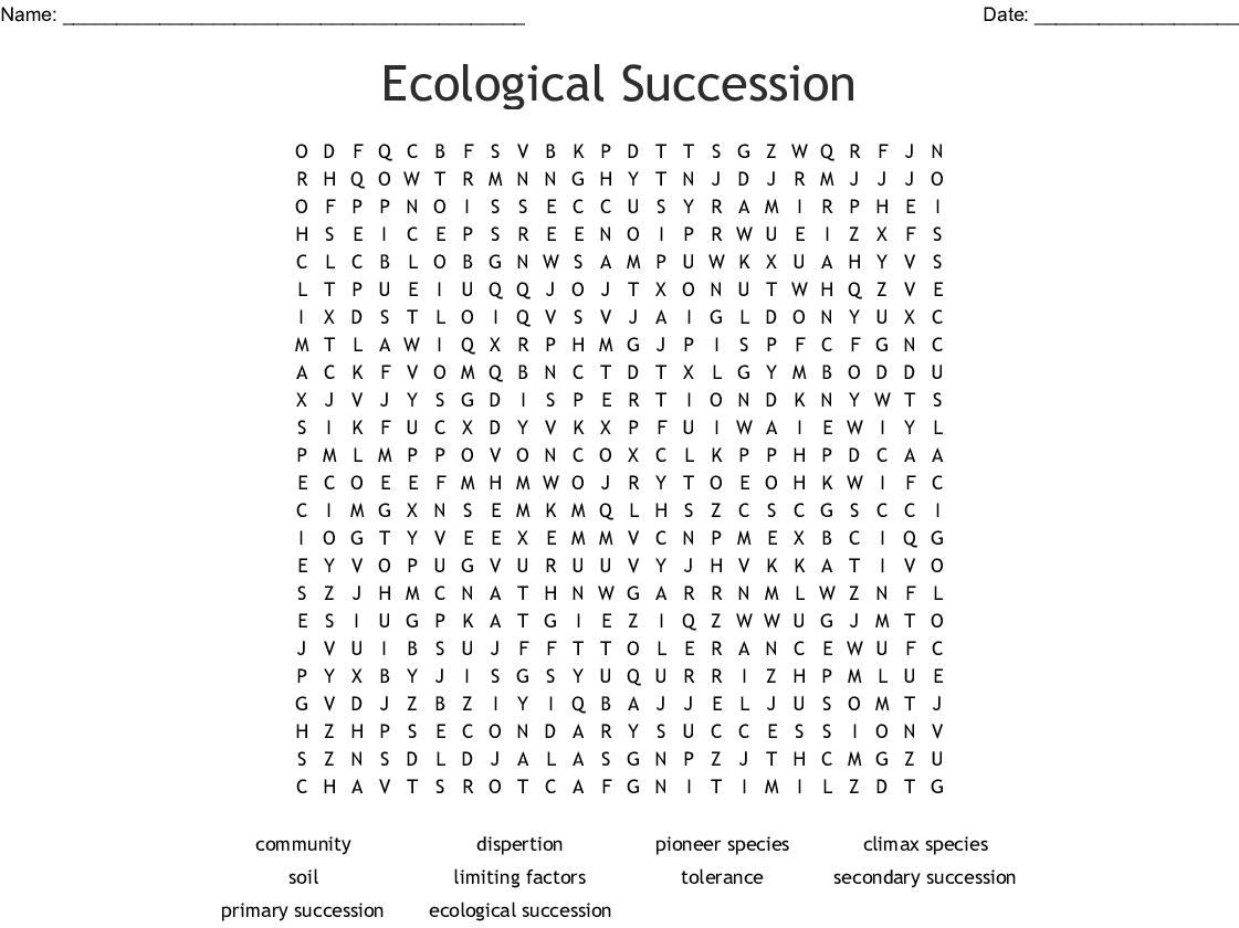 43 Succession Worksheet Answer Key