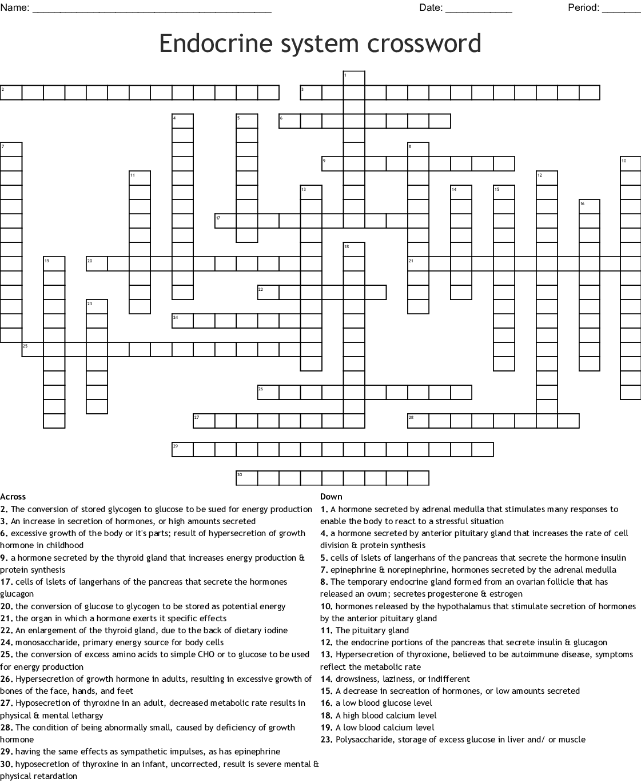 Endocrine Conditions Crosswords Word Searches Bingo