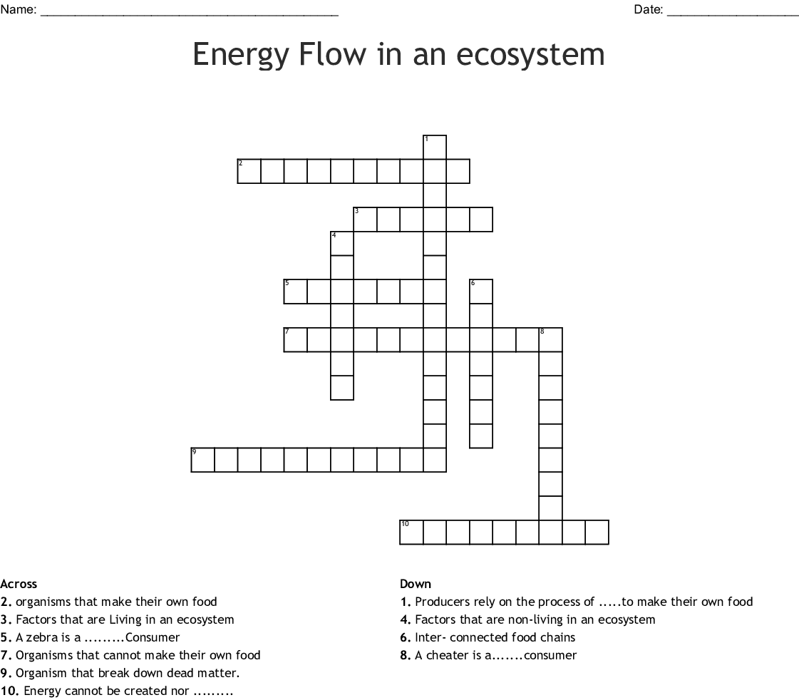 Energy Flow In Ecosystems Answers