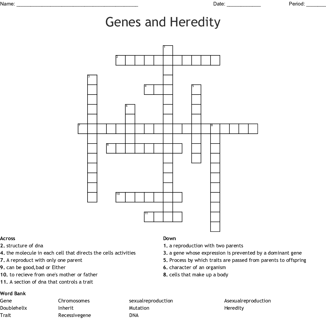 Chromosomes And Heredity Worksheet Answers