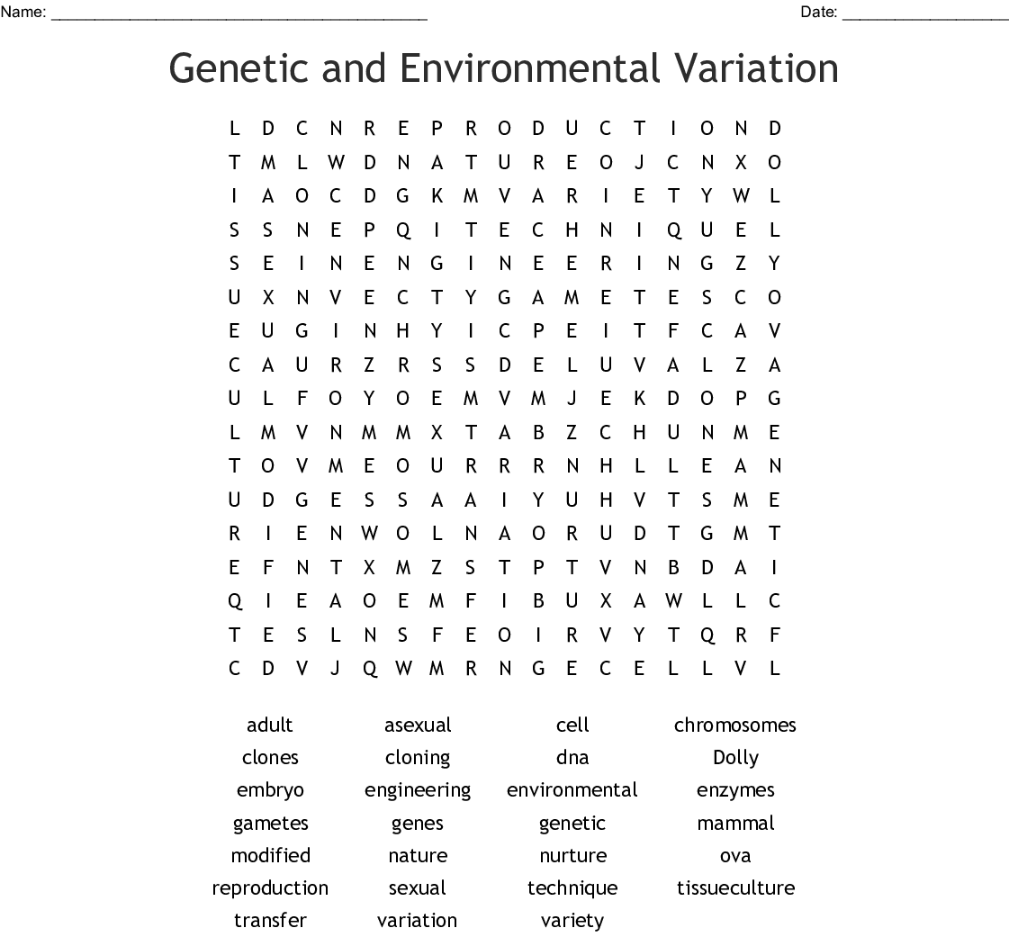 Genetic And Environmental Variation Word Search