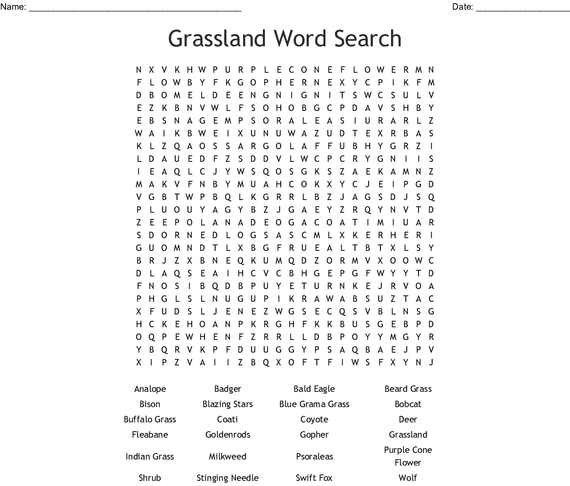 Adventures In The Forest Word Search