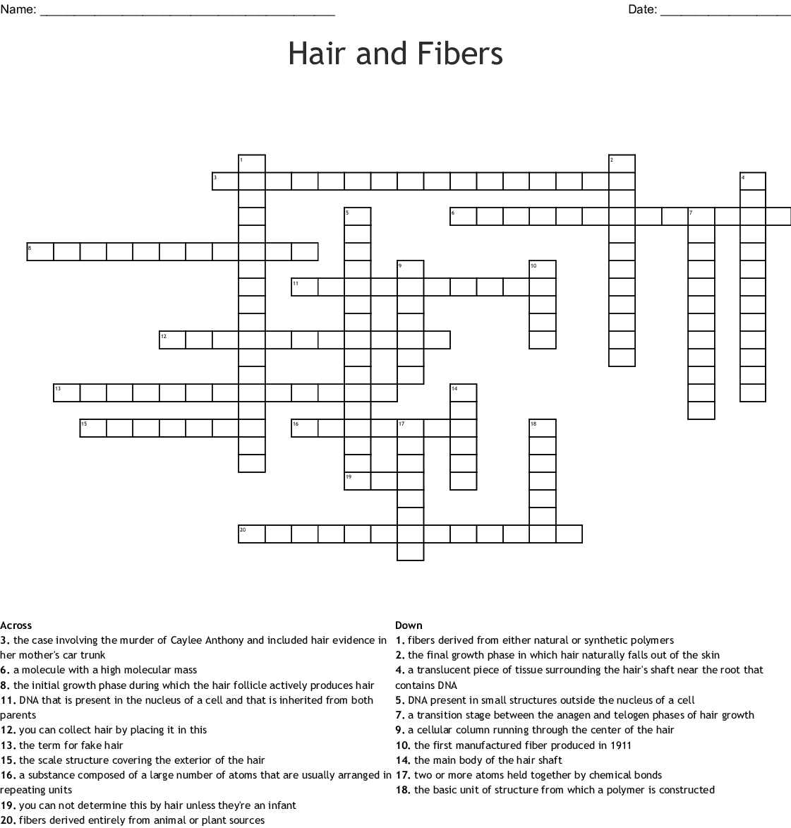 Hair Fiber Evidence Worksheet Answers