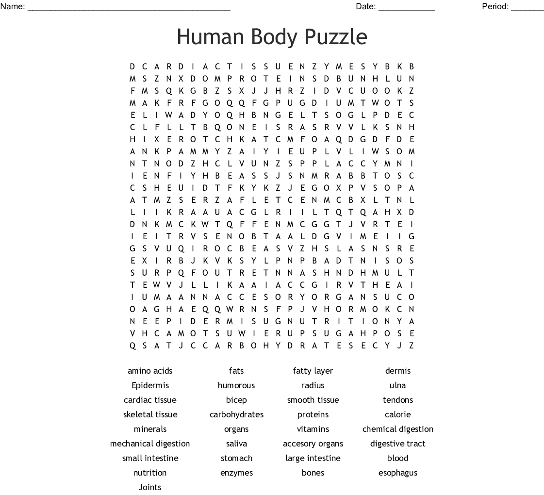Human Body Puzzle Word Search