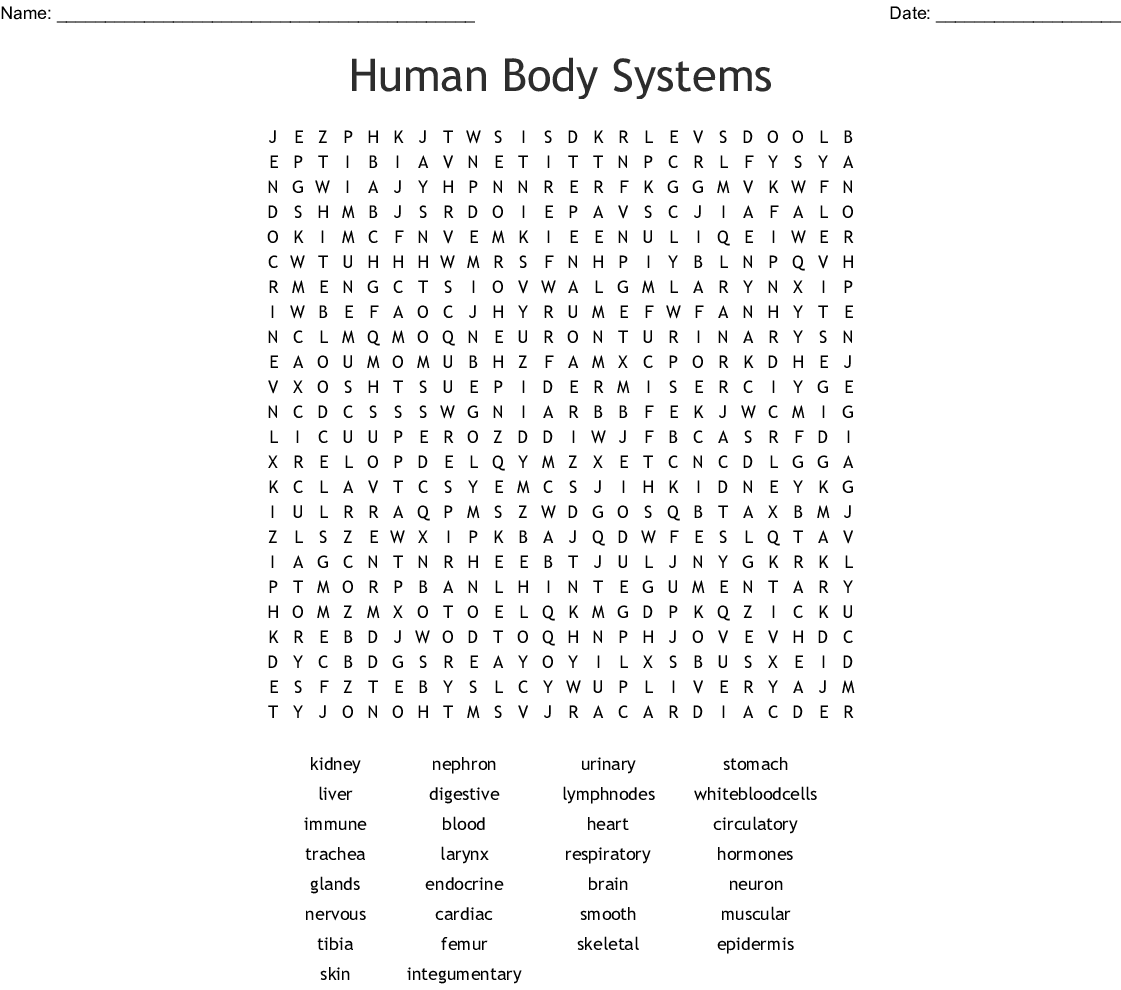 Cpt Coding Word Search