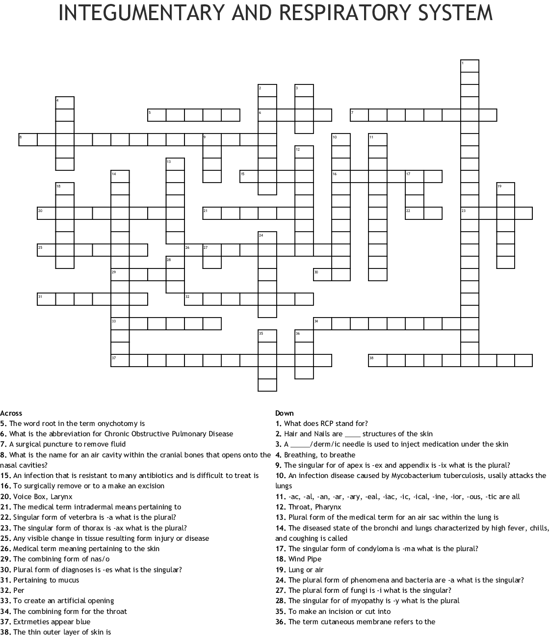 Integumentary And Respiratory System Crossword