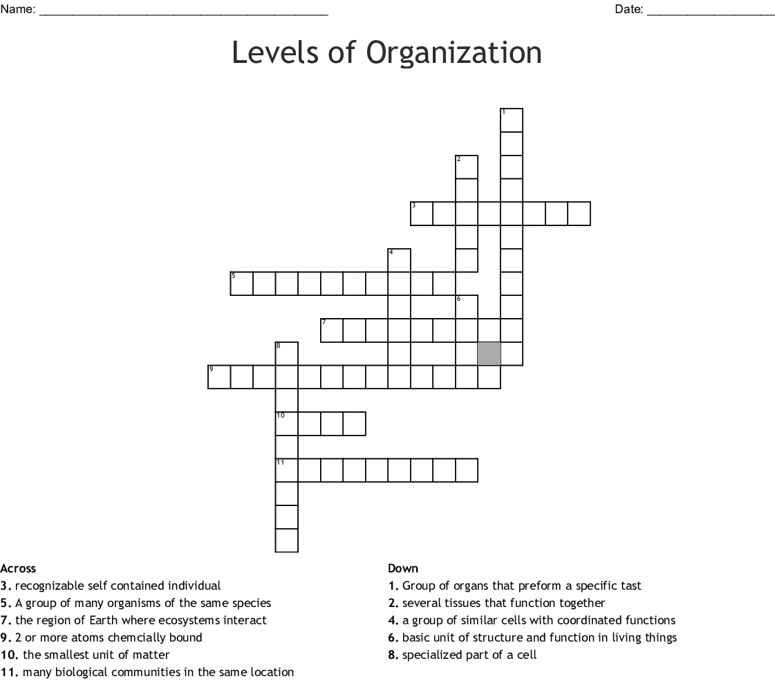 Organelle Matching Worksheet