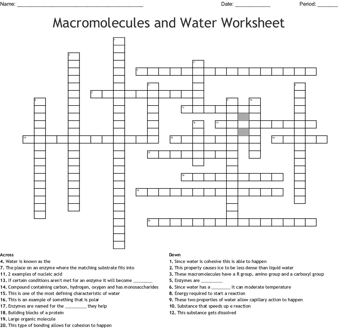 Macromolecules And Water Worksheet Crossword