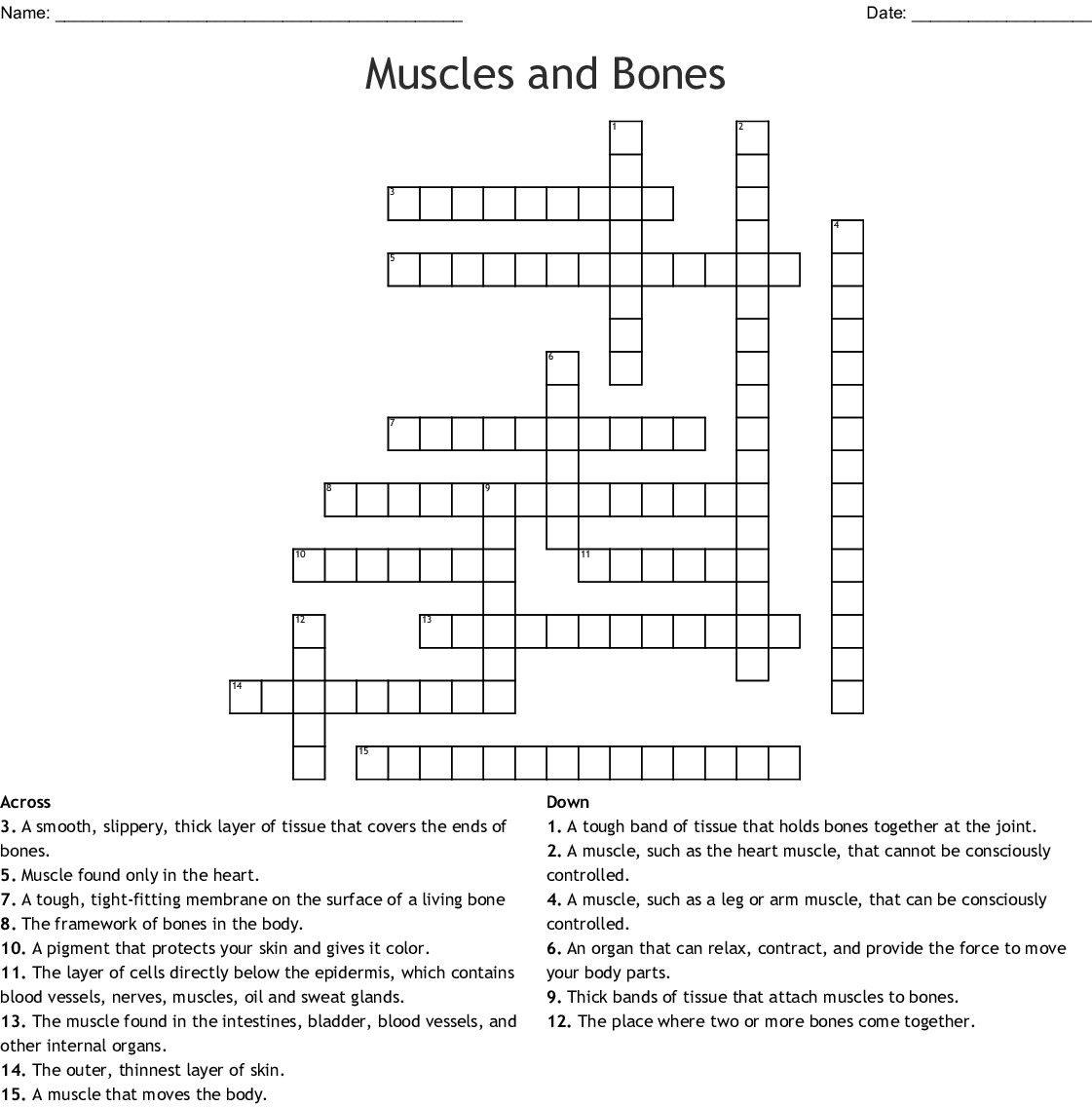 Muscles And Bones Crossword
