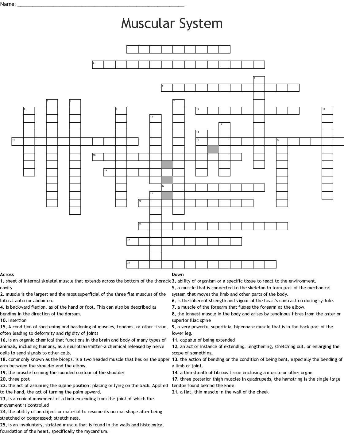 Muscular System Crossword