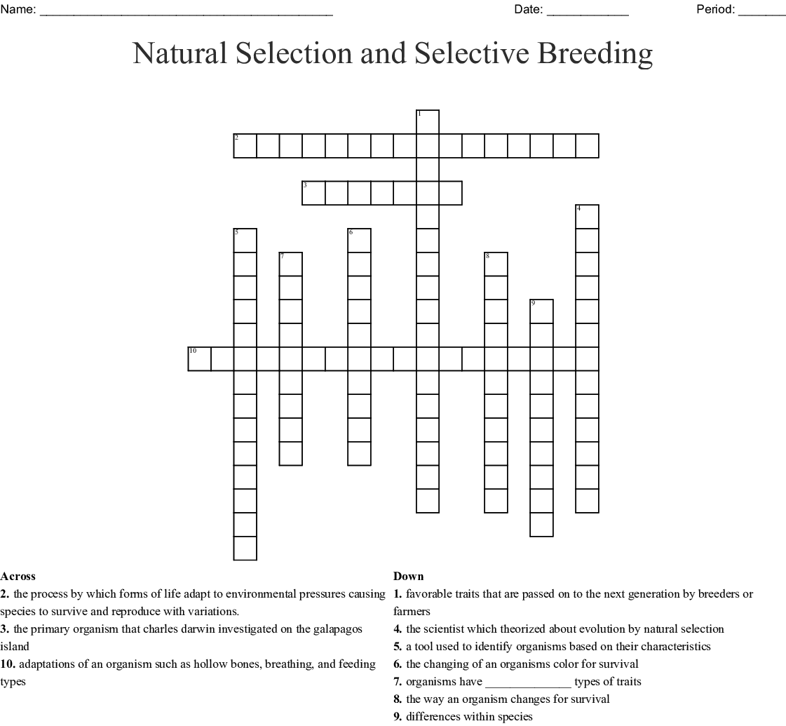 Selective Breeding Worksheet