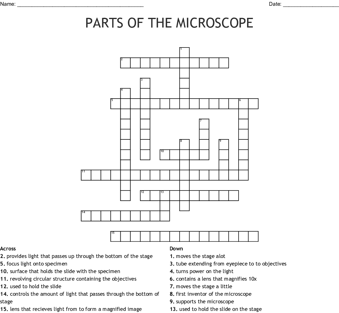 Microscope Crossword Puzzle Answer Key