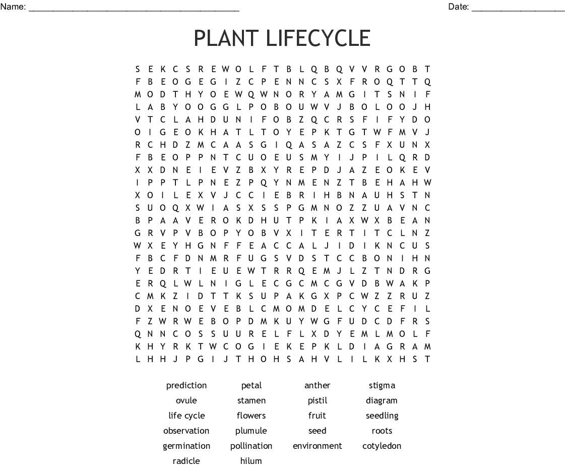 Plant Lifecycle Word Search