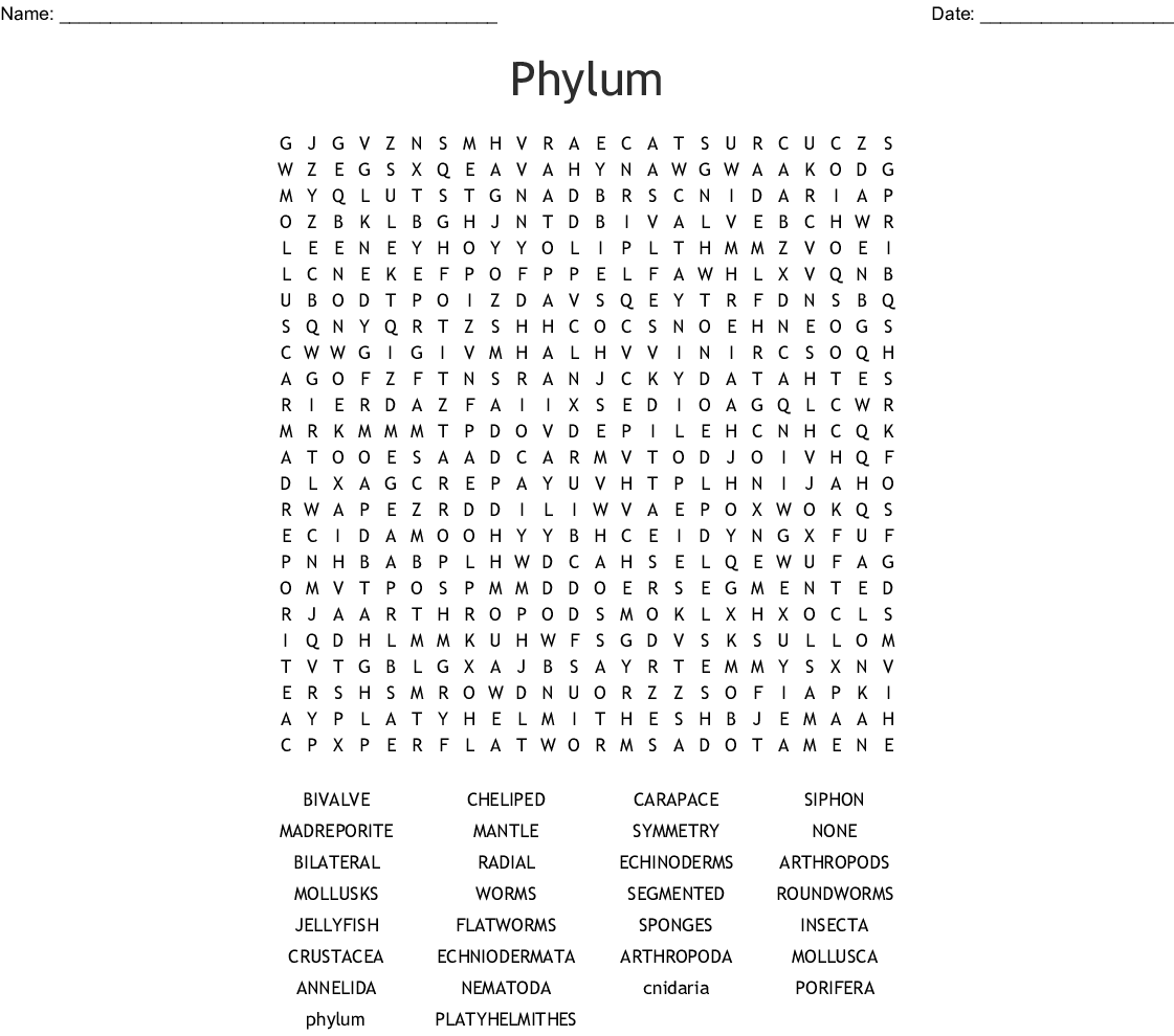 Phylum Word Search