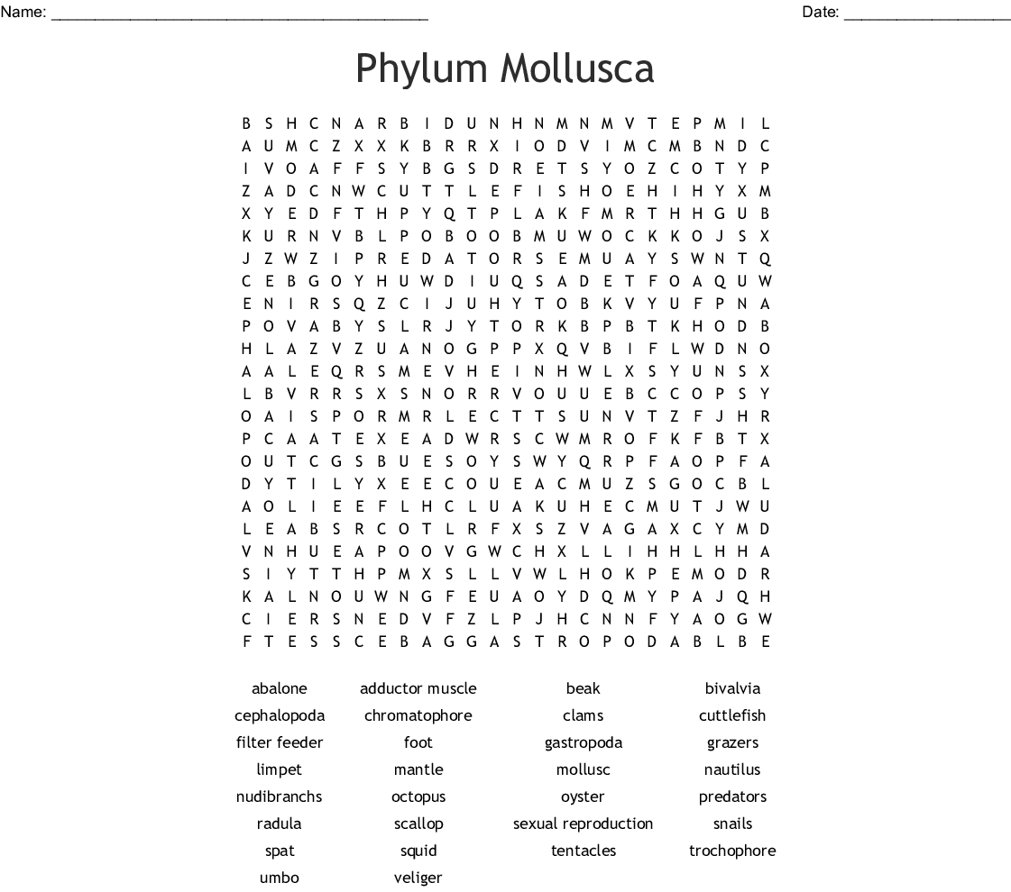 Mollusks Word Puzzle Word Search
