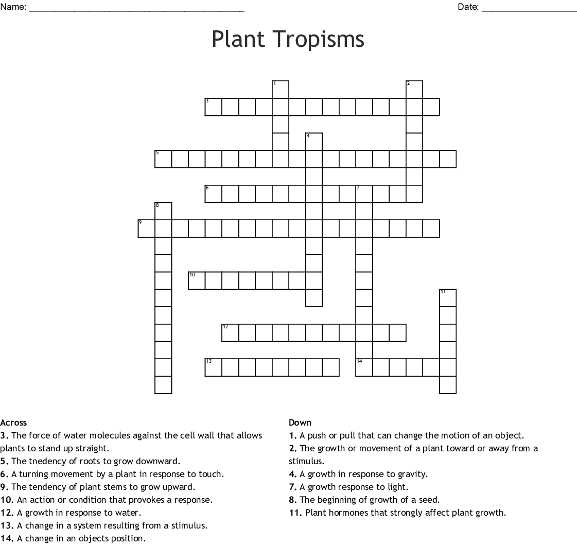Printables Of Plant Tropisms Worksheet