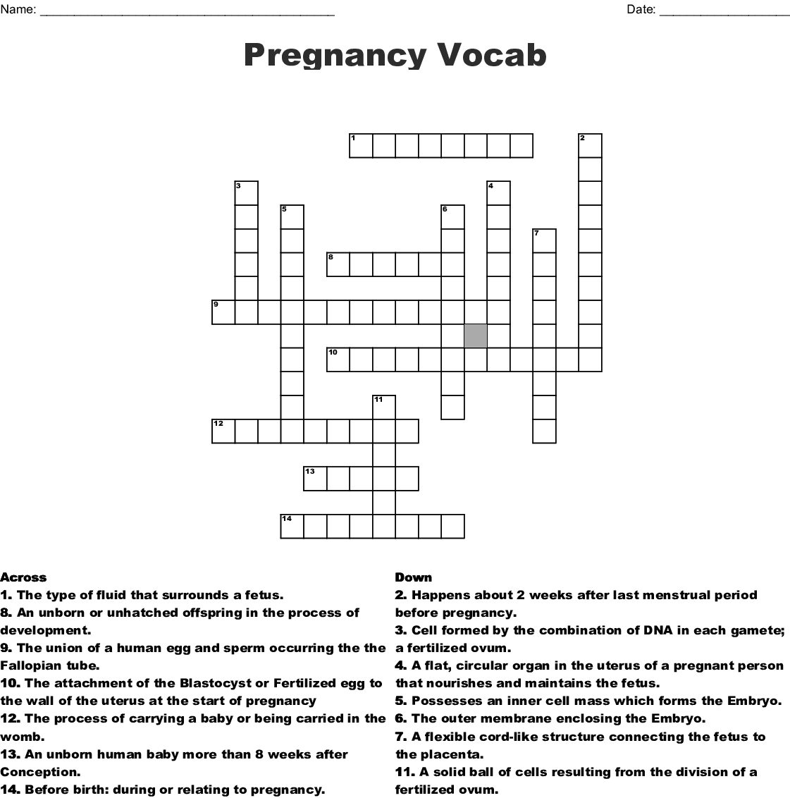 Pregnancy Word Search