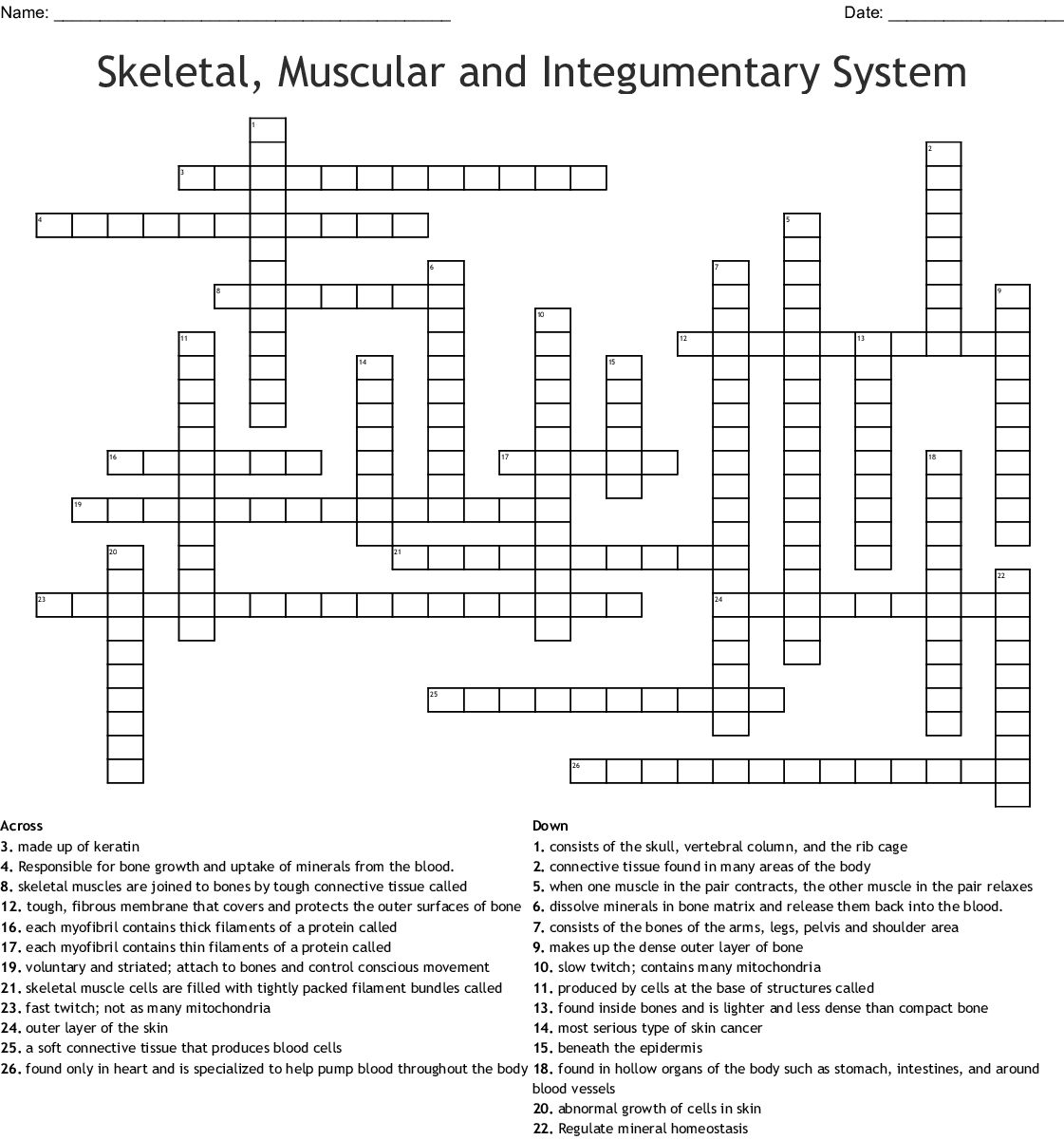 Skeletal Muscular And Integumentary System Crossword