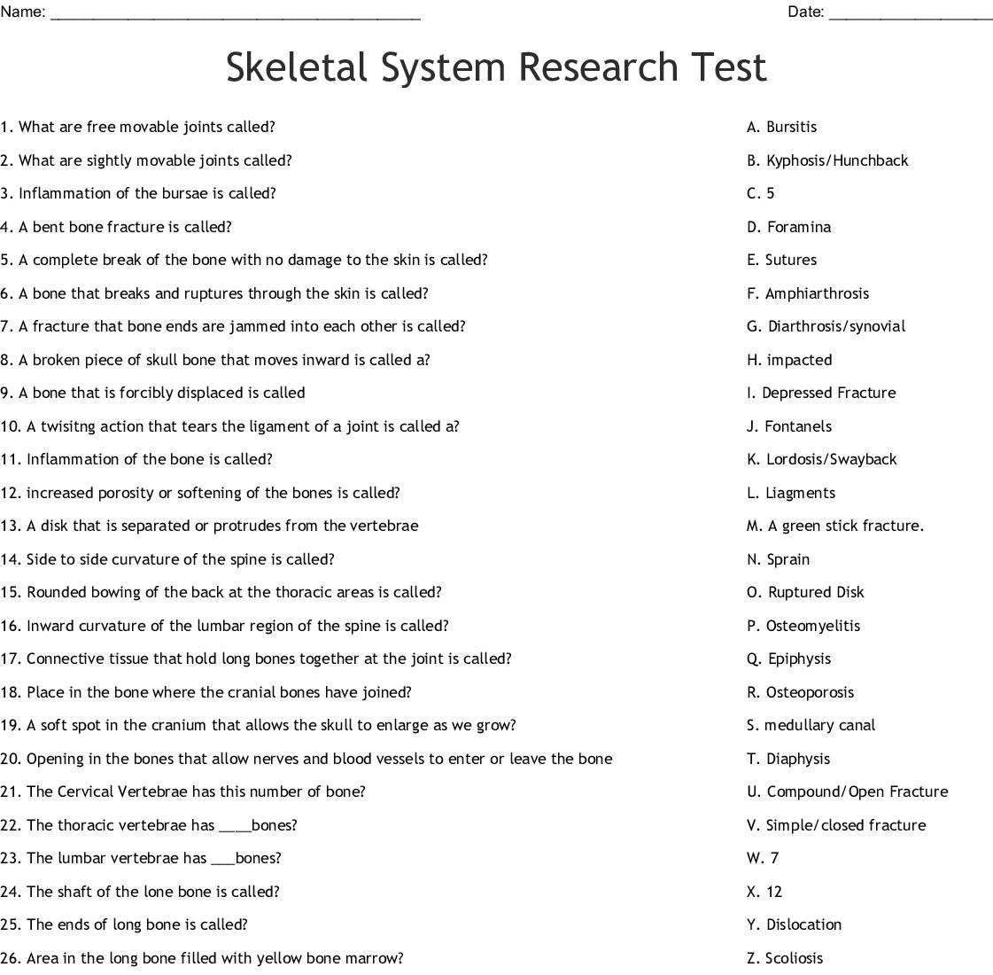 Skeletal System Research Test Worksheet