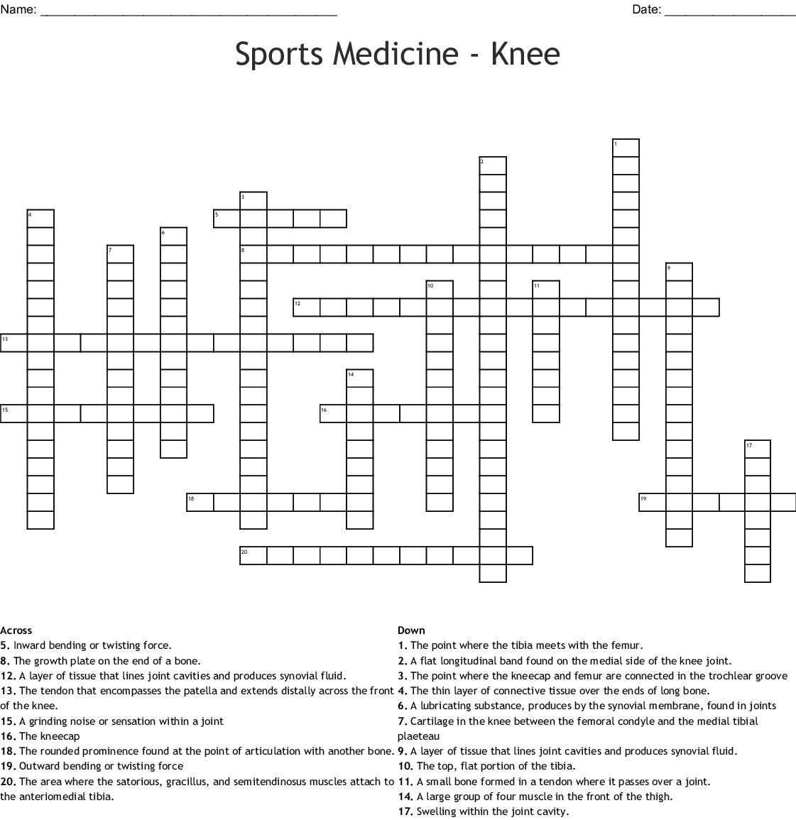 Knee Joint Worksheet