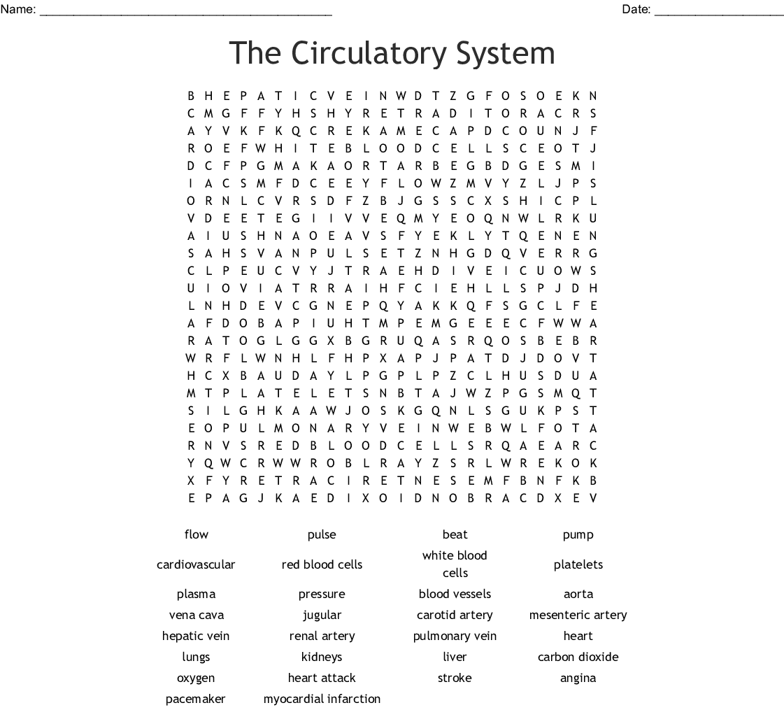Radiology Word Search