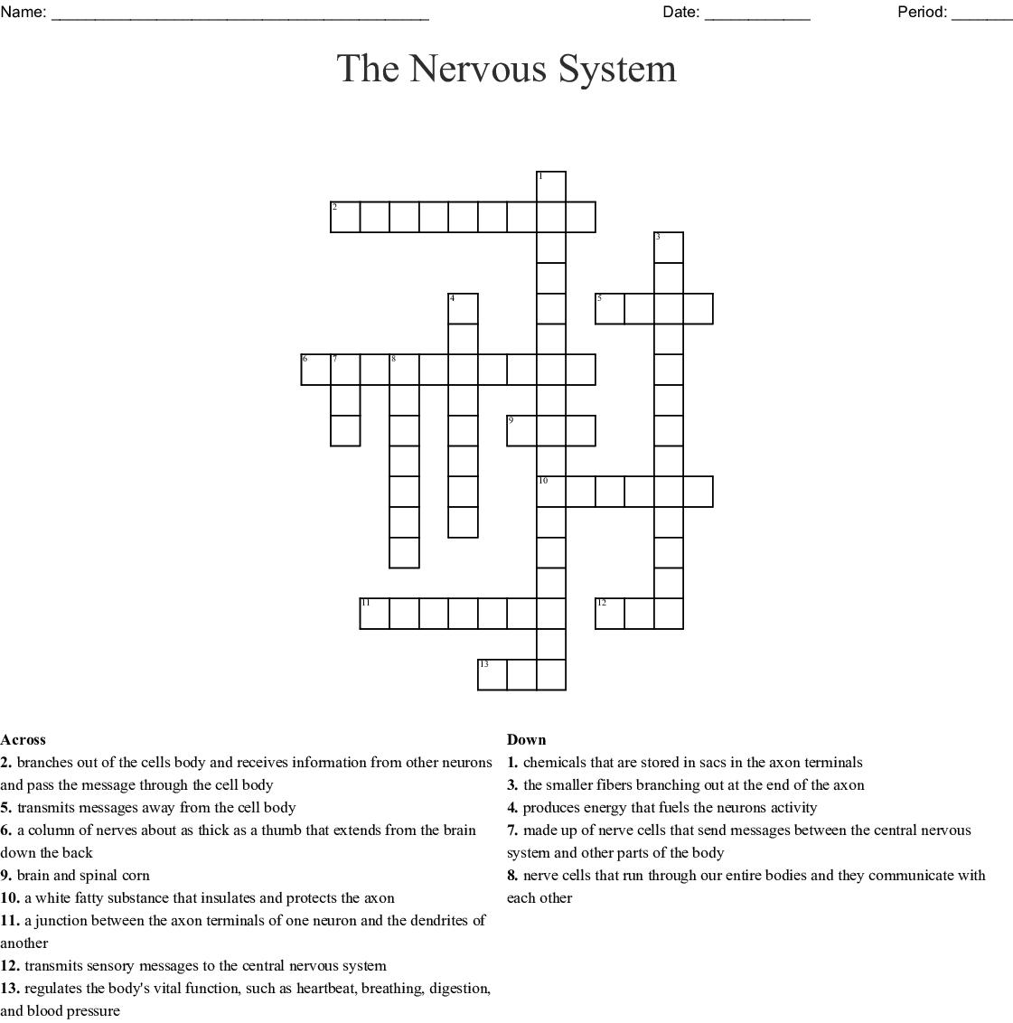 Biology Nervous System Crossword