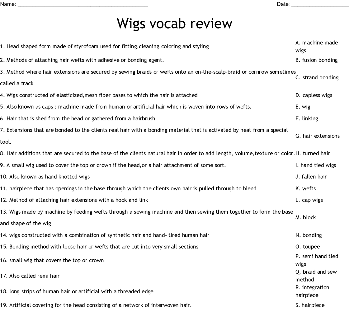 Wigs Vocab Review Worksheet