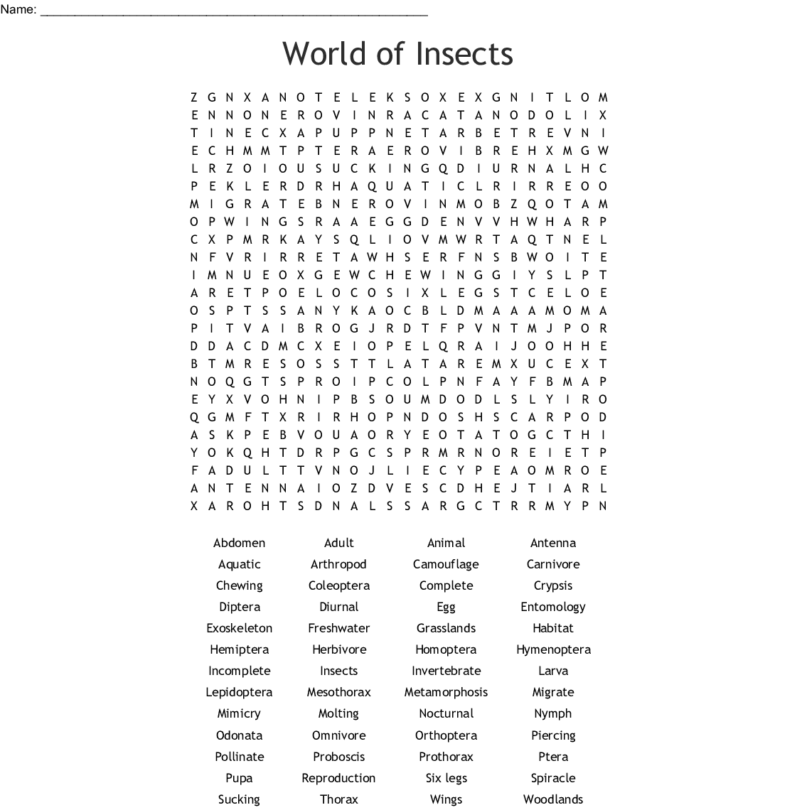 World Of Insects Word Search