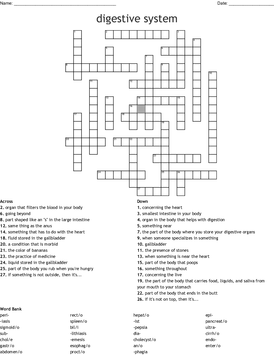 Digestive System Crossword Puzzle
